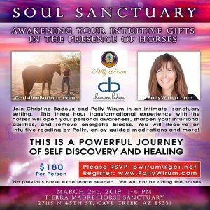 Soul Sanctuary - Horses
